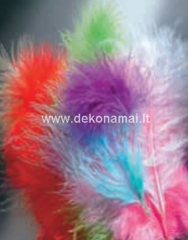 Various feathers, 15 pcs